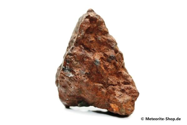 NWA Westsahara Meteorit - 65,30 g