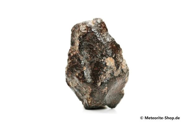 NWA 869 Meteorit - 32,80 g
