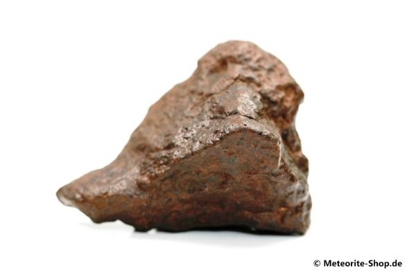 NWA Westsahara Meteorit - 60,00 g