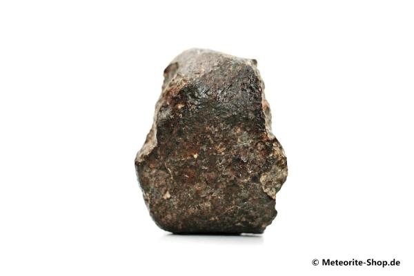 NWA 869 Meteorit - 34,30 g