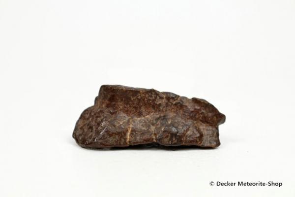 NWA Westsahara Meteorit - 13,30 g