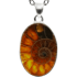 Kategorie Ammonit-Anhänger