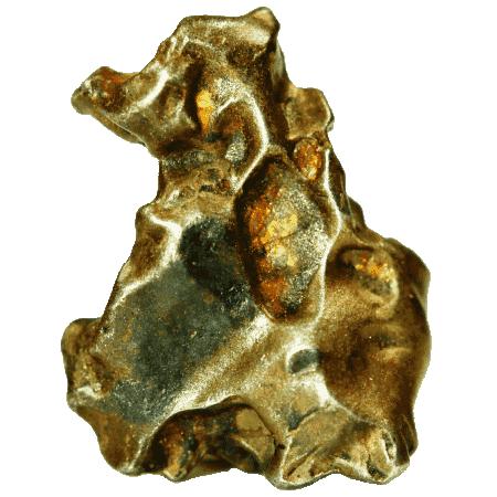 Golden Pallasit Meteorit (gepaart mit NWA 7788)