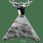 Stein-Eisen-Meteorit-Anhänger (Seymchan | Varia)