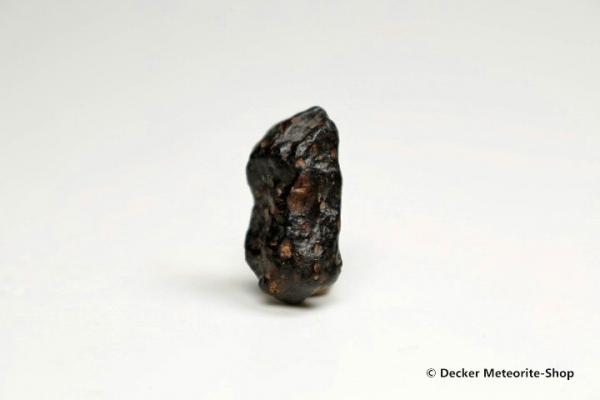 NWA 3118 Meteorit - 2,65 g