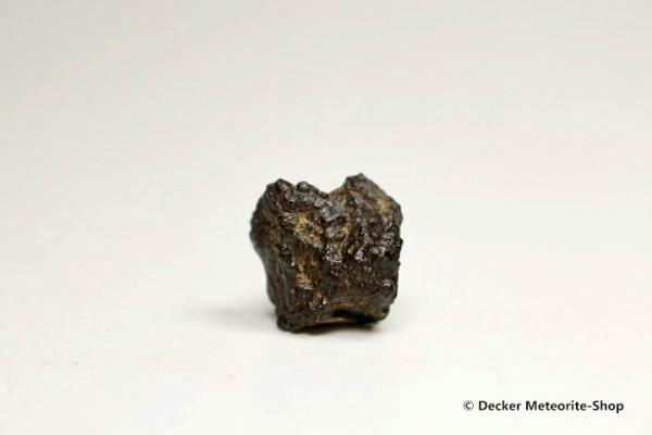 NWA 3118 Meteorit - 2,50 g