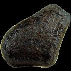 Steinmeteoriten vom Typ Howardit