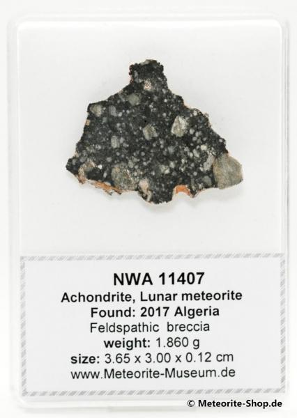NWA 11407 Mond Meteorit - 1,86 g