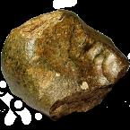 Nordwestafrika 4881 (NWA 4881) Mond Meteorit aus Nordwestafrika