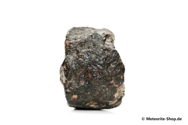 NWA 869 Meteorit - 32,20 g