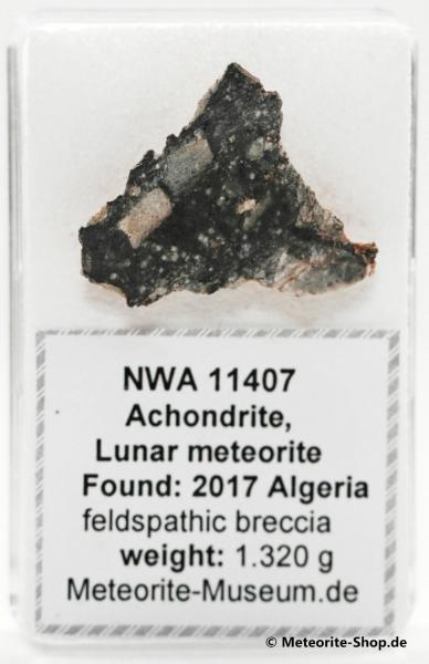 NWA 11407 Mond Meteorit - 1,32 g