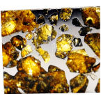 Stein-Eisen-Meteoriten der Klassen Pallasit & Mesosiderit
