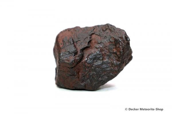 Agoudal Meteorit - 31,40 g