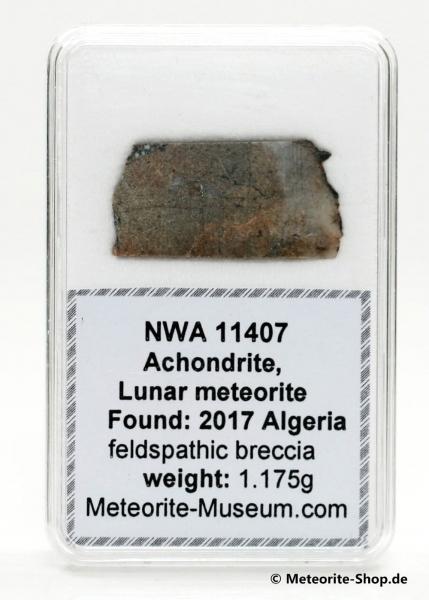 NWA 11407 Mond Meteorit - 1,175 g
