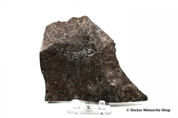 Chinga Meteorit - 2020,00 g