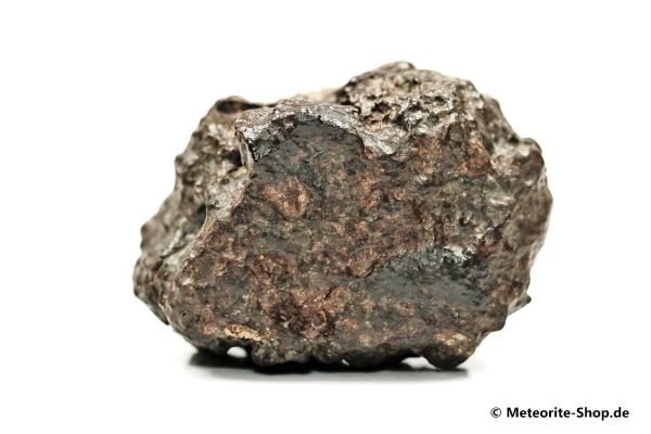 NWA 869 Meteorit - 102,20 g