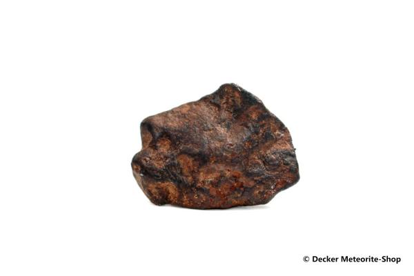 Agoudal Meteorit - 17,50 g