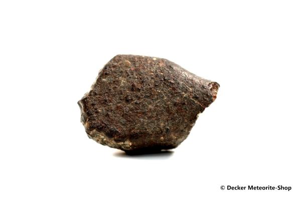 NWA 869 Meteorit - 37,80 g