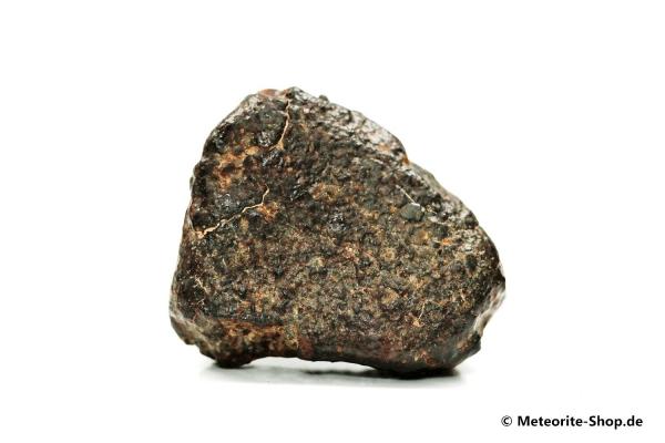 NWA 869 Meteorit - 26,40 g
