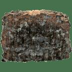 NWA 13871 Meteorit aus Nordwestafrika