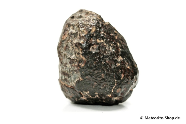 NWA 869 Meteorit - 25,60 g