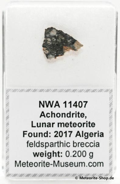 NWA 11407 Mond Meteorit - 0,200 g