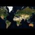Kategorie Meteoriteneinschläge