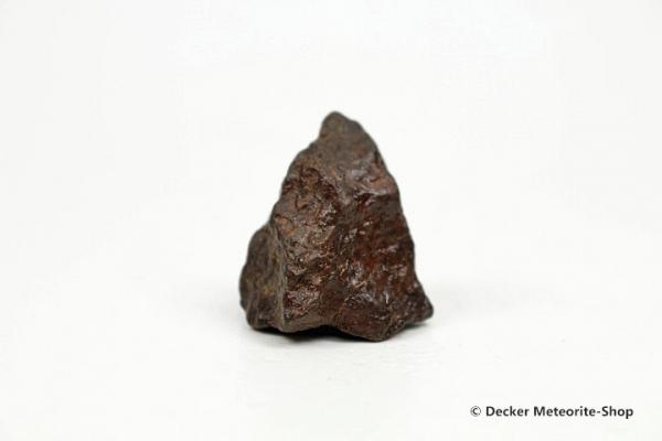 NWA Westsahara Meteorit - 14,80 g