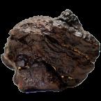 Dhofar 1722 Meteorit aus dem Oman