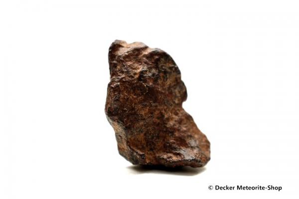 Agoudal Meteorit - 19,00 g