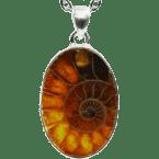 Fossil-Anhänger (Ammonit | Scheibe | 925er Silber)