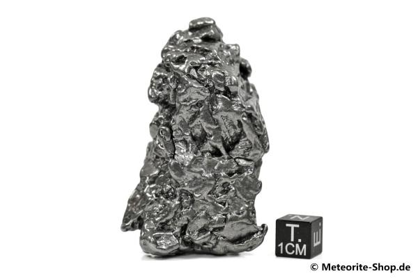 Campo del Cielo Meteorit - 195,90 g