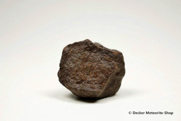NWA 869 Meteorit - 25,10 g
