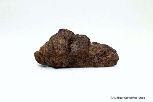 Gold Basin Meteorit - 9,40 g