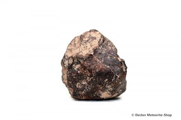 Gold Basin Meteorit - 18,30 g