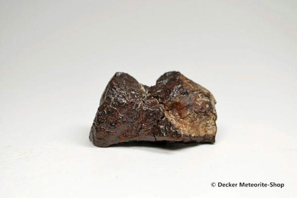 Dhofar 020 Meteorit - 40,60 g
