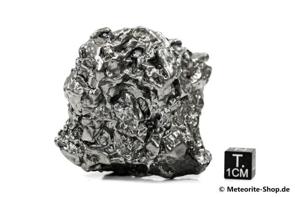Campo del Cielo Meteorit - 304,40 g