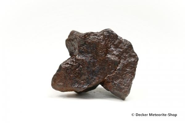 NWA Erfoud Meteorit - 70,00 g