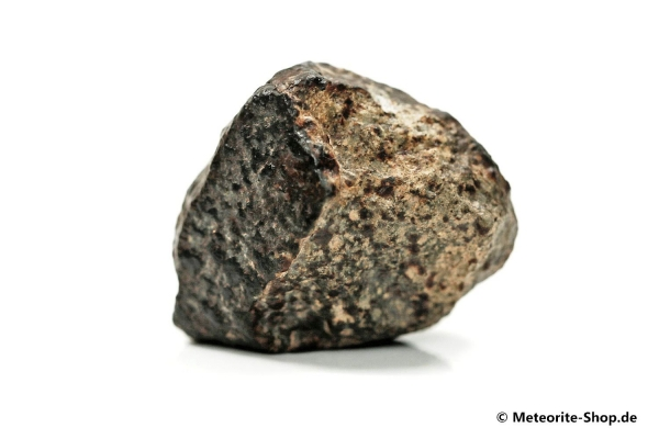 NWA 869 Meteorit - 23,00 g