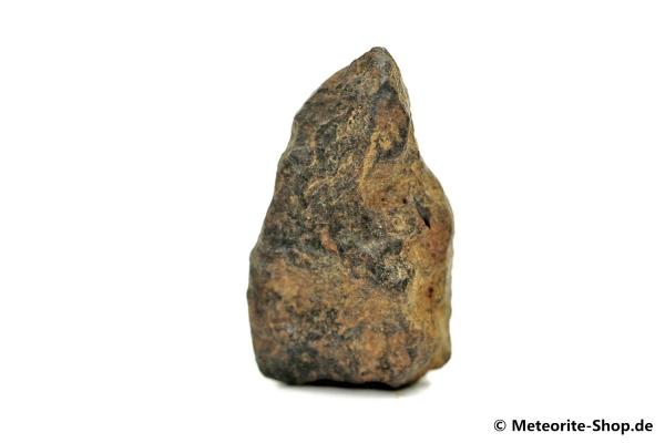 NWA 859 Meteorit - 11,00 g