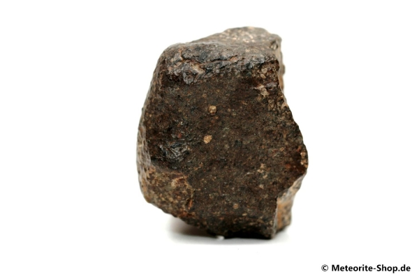 NWA 869 Meteorit - 70,00 g