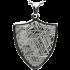 Kategorie Eisen-Meteorit-Anhänger (Muonionalusta | Schild)