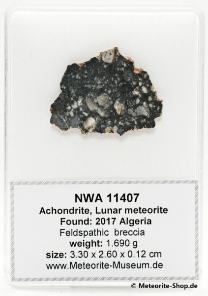 NWA 11407 Mond Meteorit - 1,69 g