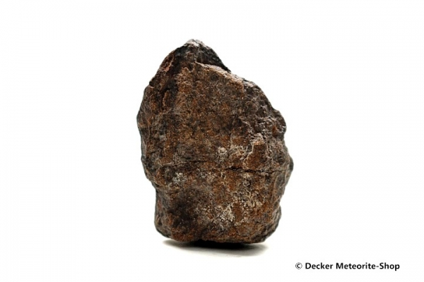 NWA 4528 Meteorit - 17,80 g
