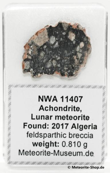 NWA 11407 Mond Meteorit - 0,810 g