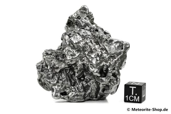 Campo del Cielo Meteorit - 199,10 g