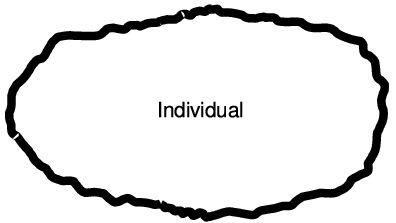 Schema eines Individuum-Meteoriten