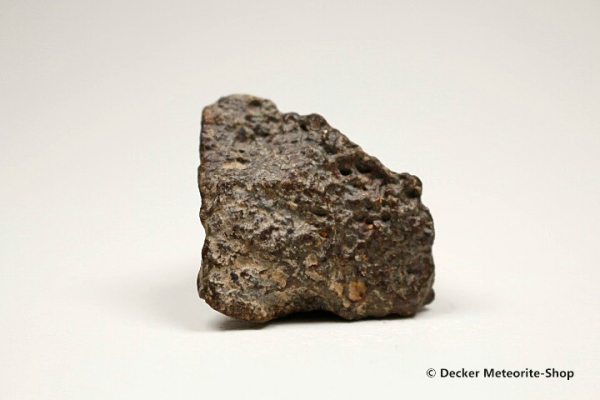 NWA 869 Meteorit - 45,50 g