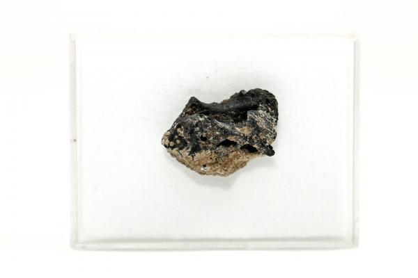 Irghizit - 1,11 g