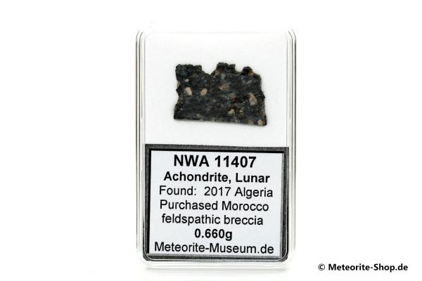 NWA 11407 Mond Meteorit - 0,660 g